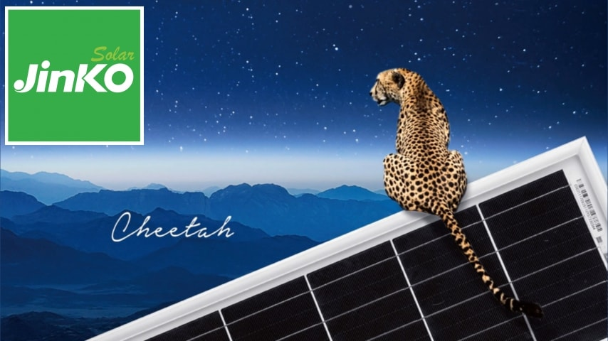 Jinko Cheetah Mono Perc Tech Record 469 3 Watts From A 72